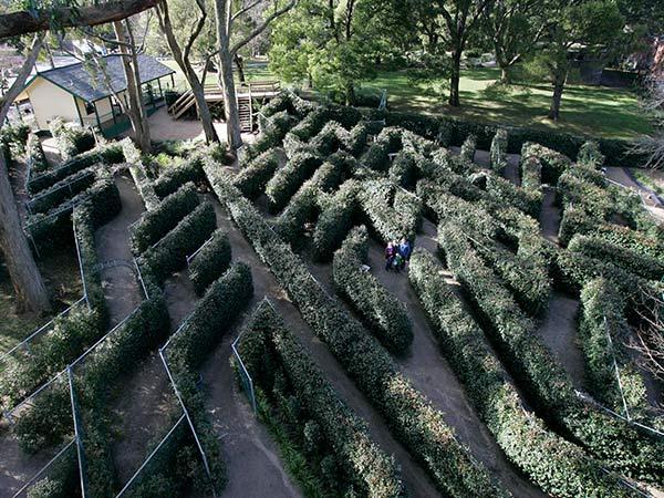 SkyHigh-Maze