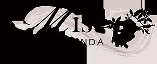 Mist@Olinda-Functions-Events