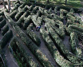 maze skyhigh